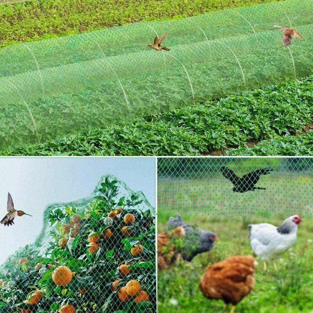 Plasa Protectie Plante Anti-pasari Teox.ro 1