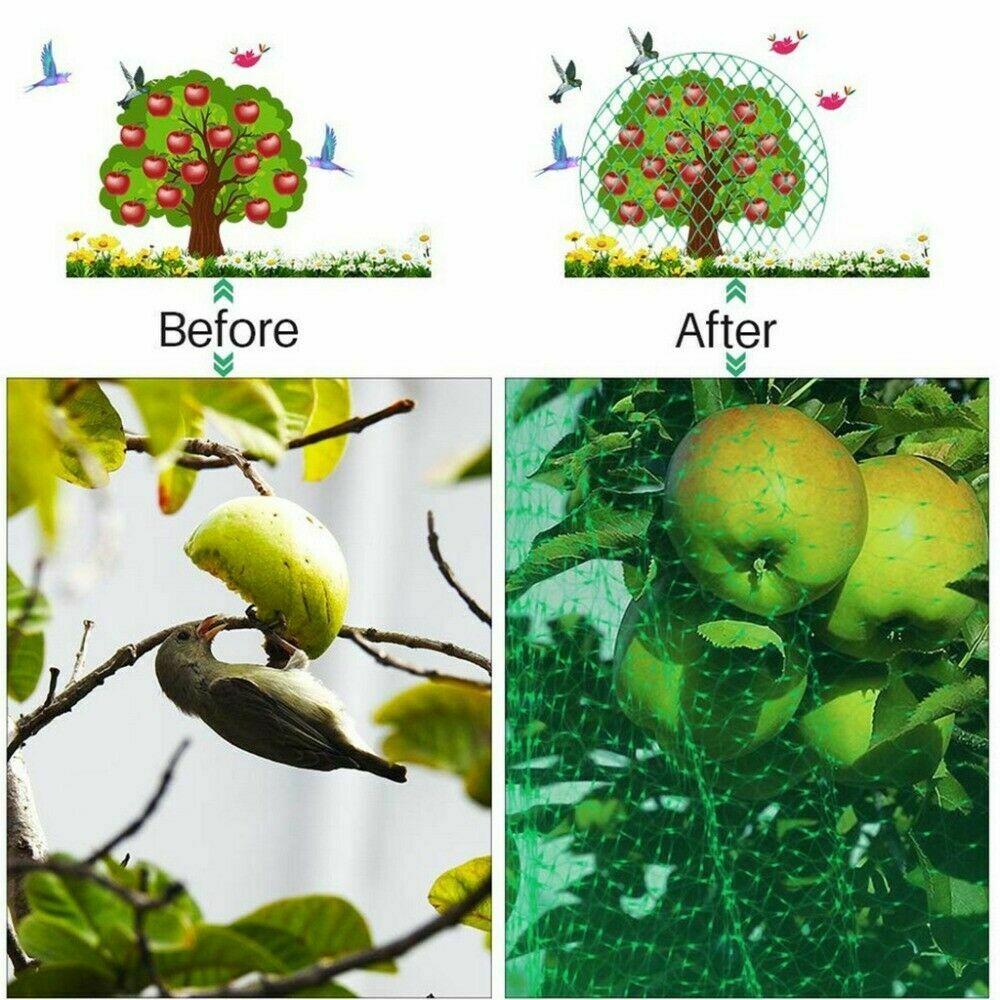 Plasa Protectie Plante Anti-pasari Teox.ro 3