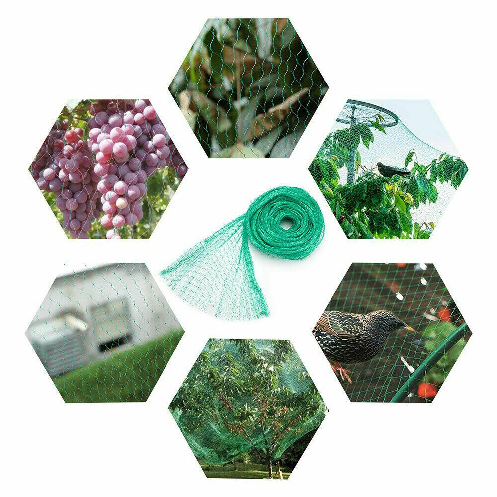 Plasa Protectie Plante Anti-pasari Teox.ro 4